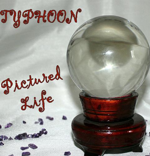 TYPHOON_PICTURED LIFE_500x500