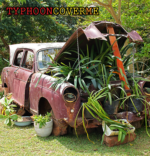 TYPHOON_COVER ME_500x500