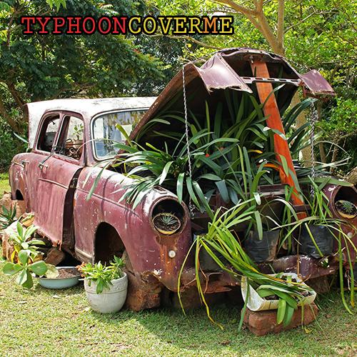 Typhoon: Cover Me